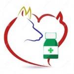 Santé chiens: les maladies cardiaques