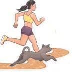 Comment pratiquer une activité physique avec son chien ?