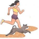 Comment pratiquer une activité physique avec son chien?