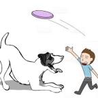 Sante chien: Quelles activités sportives pour les canins ?