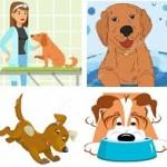 Santé chien: Comment organiser une bonne hygiène de vie pour son chien ?