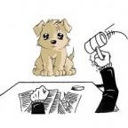 Assurance responsabilité civile chien obligatoire pour les chiens de certaines catégories