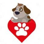 Santé chien: Comment prendre soin des pattes de son chien?