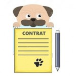 Quelles assurances pour le sport canin?