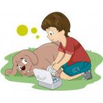 Santé chiens : Quels sont les premiers gestes d'urgence en cas d'accident de chien ?