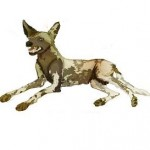 Santé chien: Que faire en cas d'anorexie chez son chien ?