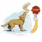 Santé chien: comment empêcher son chien d'aboyer?