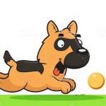 Santé chien: Comment jouer avec son chien en extérieur?