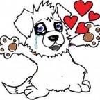 Sante chien: Que faire si mon chien est envahissant ?