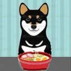 Quelle alimentation pour un chien adulte?