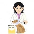 Quels sont les tarifs des soins vétérinaires?