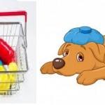 L'hypersensibilité médicamenteuse chez le chien