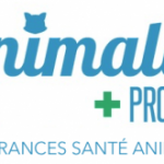 Mutuelle chien ANIMALIA PROTECT