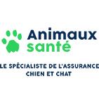 Mutuelle chien Animaux Santé