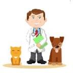 Réduire ses frais de santé animaux par les écoles vétérinaires